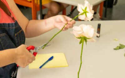 10 Tips to extend the life of your flowers
